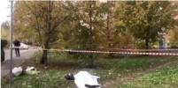 Задержан основной подозреваемый в деле об убийстве женщины-следователя в Подмосковье