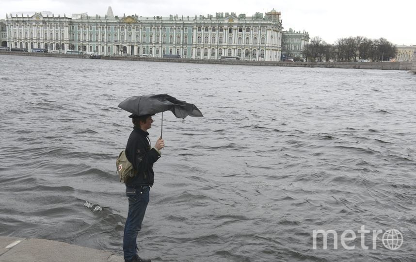Неделя в Петербурге начнется с гололедицы и ветра. Фото Интерпресс
