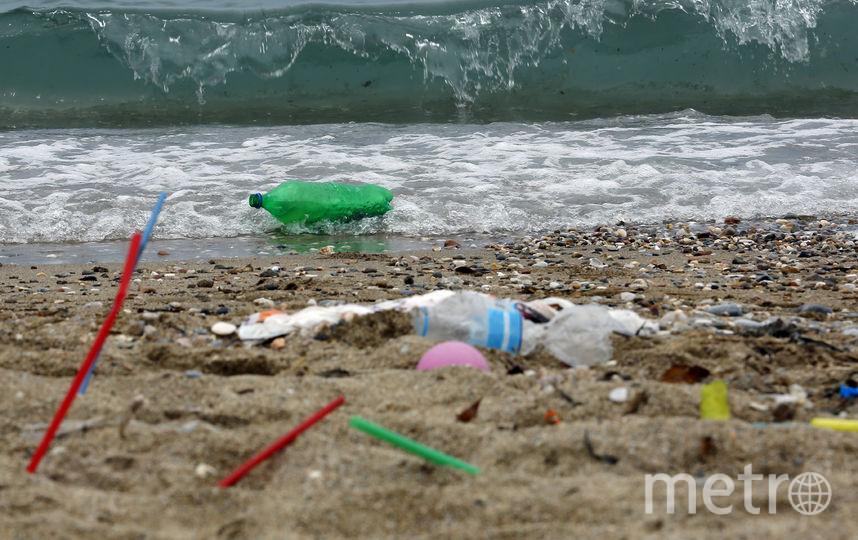 Ежегодно в мировой океан в целом попадает около 8 миллионов тонн пластиковых отходов. Фото Getty