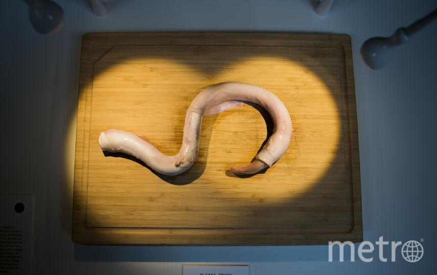 Отварной бычий пенис - деликатес из Китая. Фото AFP