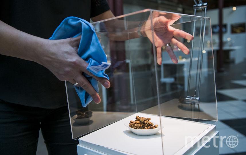 Копи-лувак - разновидность кофе, известная специфическим способом обработки.. Фото AFP