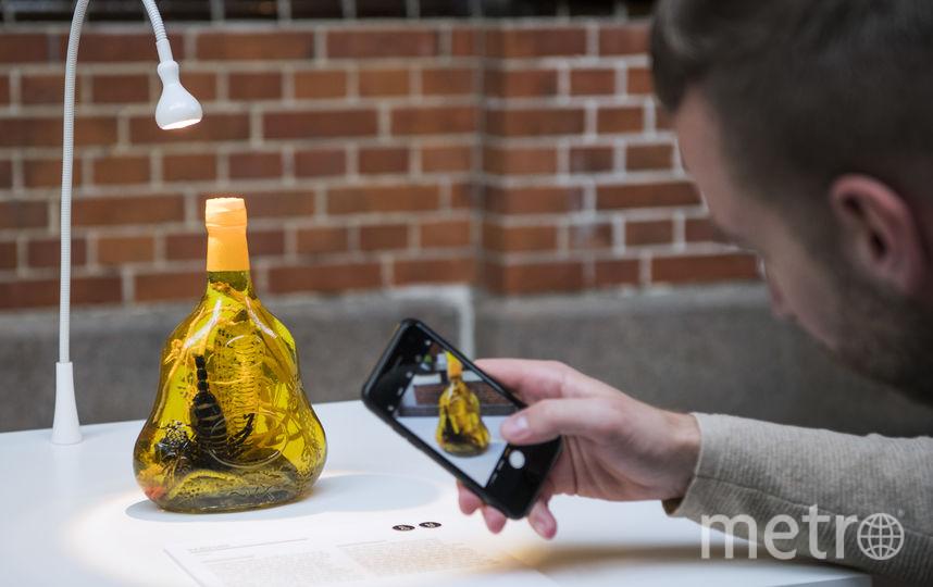 Хабушу - змеиное вино. Фото AFP