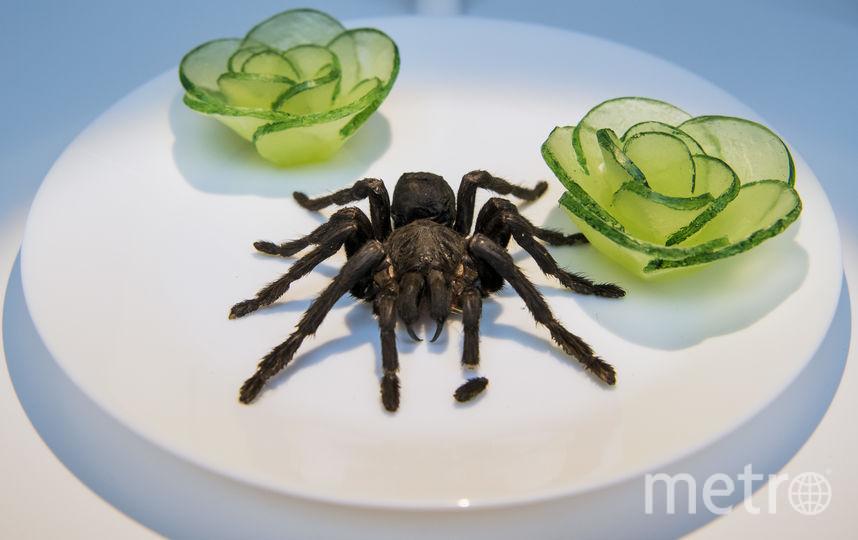 Жареный тарантул - деликатесное блюдо в Камбодже. Фото AFP