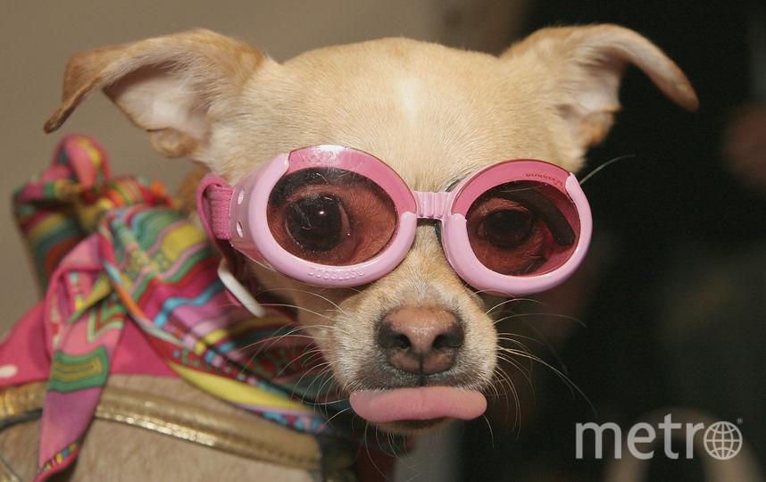 Розовый. Фото Getty