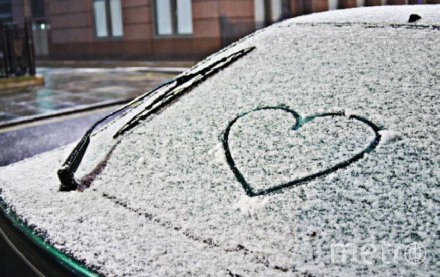 Снега в Петербурге пока нет. Фото Getty