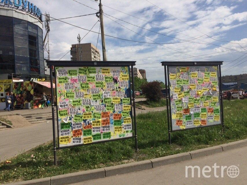 Петербургские активисты составили 177 протоколов после мониторинга борделей. Фото Красивый Петербург, vk.com