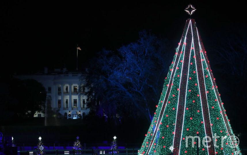 Дональд и Мелания Трамп зажгли огни на главной рождественской ели США. Фото Getty