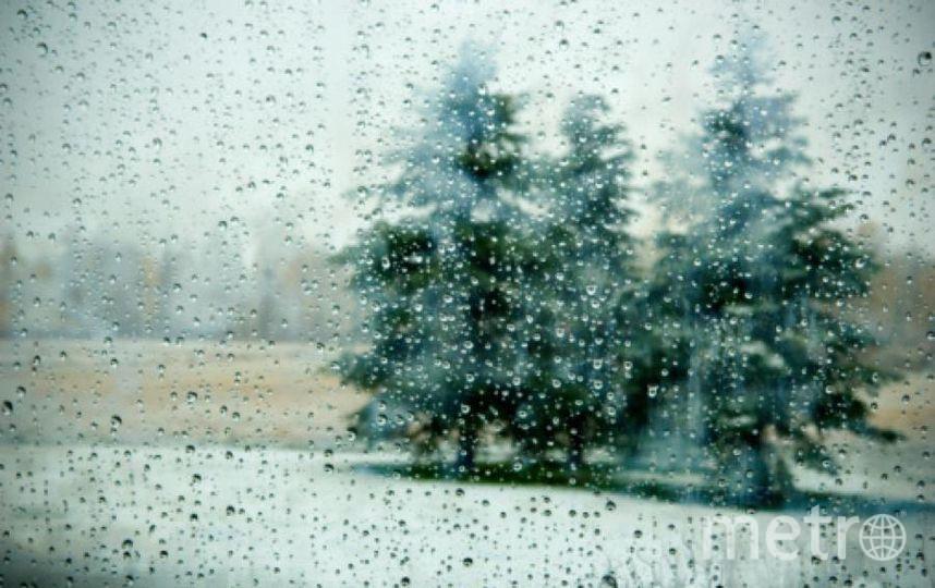 С сильным ветром ощущаться -5 будут как 10 градусов мороза. Фото Getty