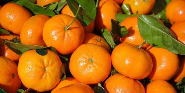 Эксперты отмечают, что небольшие потёртости, царапины или вкрапления допускаются и никак не влияют на вкус и качество мандаринов.