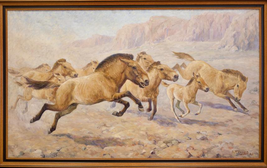 Лошадь Пржевальского. Фото Предоставлено Дарвиновским музеем