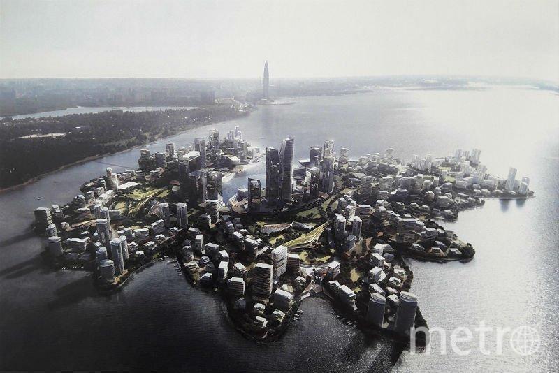 Намывные острова. Фото https://ivbg.ru