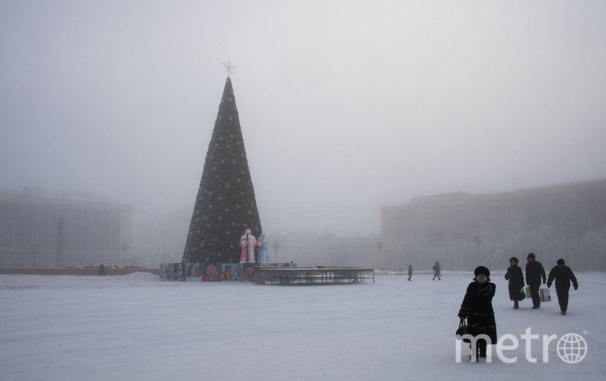 Новогодняя ёлка. Фото AFP