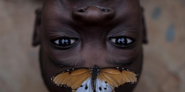 Бэнсон и бабочка. Фото: Эмилио Апарисио Р.
