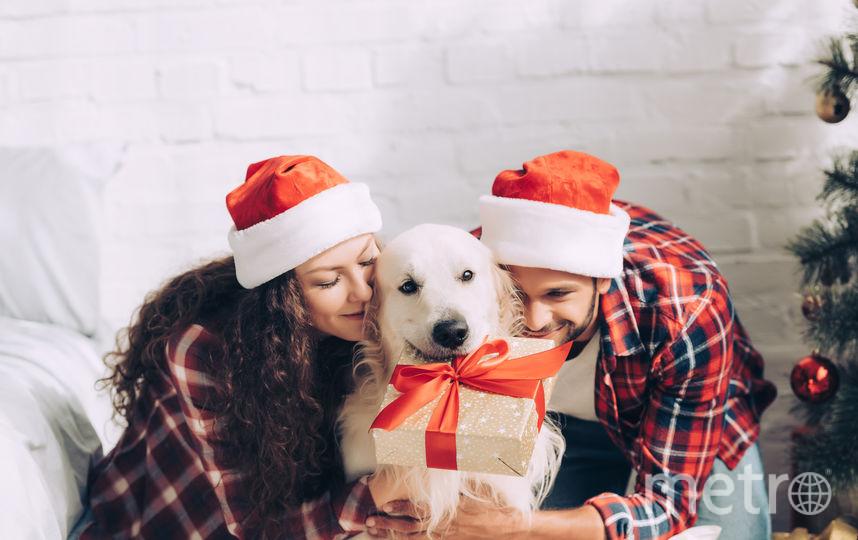 Квартира – отличный подарок себе на Новый год. А после Нового года можно за несколько месяцев вернуть часть её стоимости. Фото depositphotos