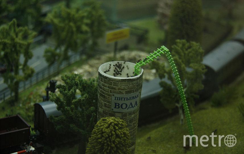 """Так может выглядеть современная муравьиная ферма: не коробочка со стеклом, а целый маленький мир. Фото  instagram @mindo_spb, """"Metro"""""""