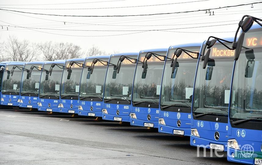 Автобусы. Фото Василий Кузьмичёнок