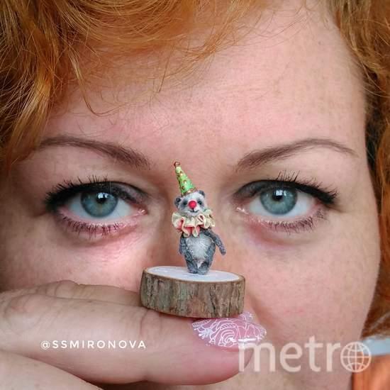 Миниатюрный мишка Тедди-клоун. Фото Предоставлено организаторами