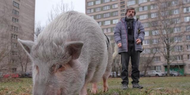 Дмитрий Крейнин с питомцами на прогулке.