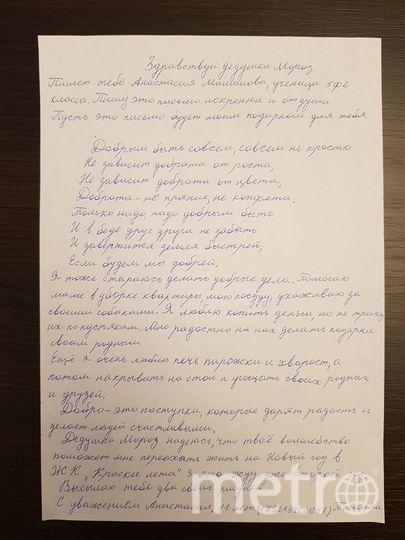 """От ученицы 5-го класса Мамоновой Анастасии, 11 лет. Фото """"Metro"""""""