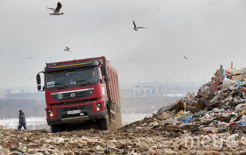 Пока мусорная реформа больнее всего ударит по Ленобласти. Городские отходы продолжат везти на местные полигоны. Фото Петр Ковалев, Интерпресс