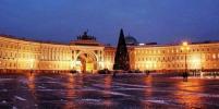 На Дворцовой площади в Петербурге установили главную ёлку города