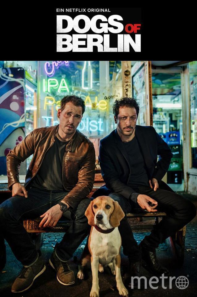 "2. ""Собаки Берлина"". Фото Кадр из фильма, kinopoisk.ru"