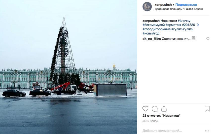 На Дворцовой площади начали собирать главную ёлку города. Фото скриншот www.instagram.com/xenpushsh