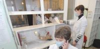 В школе в Красном Селе массово заболели дети