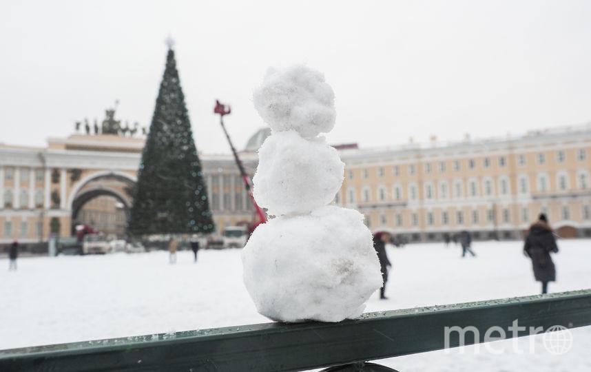 """На Дворцовой площади начали украшать главную ёлку. Фото Святослав Акимов., """"Metro"""""""