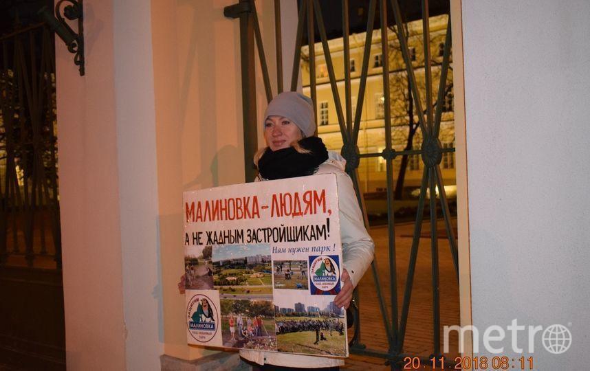 Пикет в защиту парка на Смоленке. Фото предоставлено активистами, vk.com