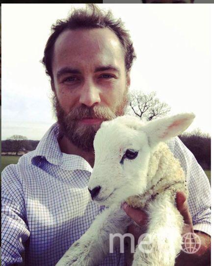 """Джеймс Миддлтон выкладывает много фото милых собак. Фото https://www.instagram.com/jmidy/, """"Metro"""""""