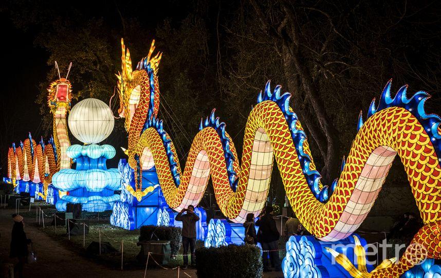 Праздник продлится до 6 февраля 2019 года. Фото AFP