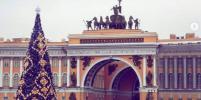 Петербург - в сказочных огнях: на Дворцовой зажгли главную ёлку города