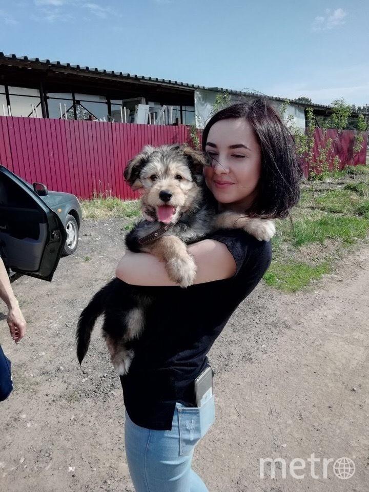 Аня, спасительница щенков. Фото предоставила Анна Гау