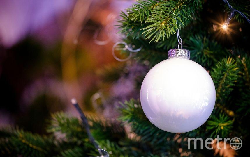 Дед Мороз скончался на детском утреннике в Кемерово. Фото pixabay