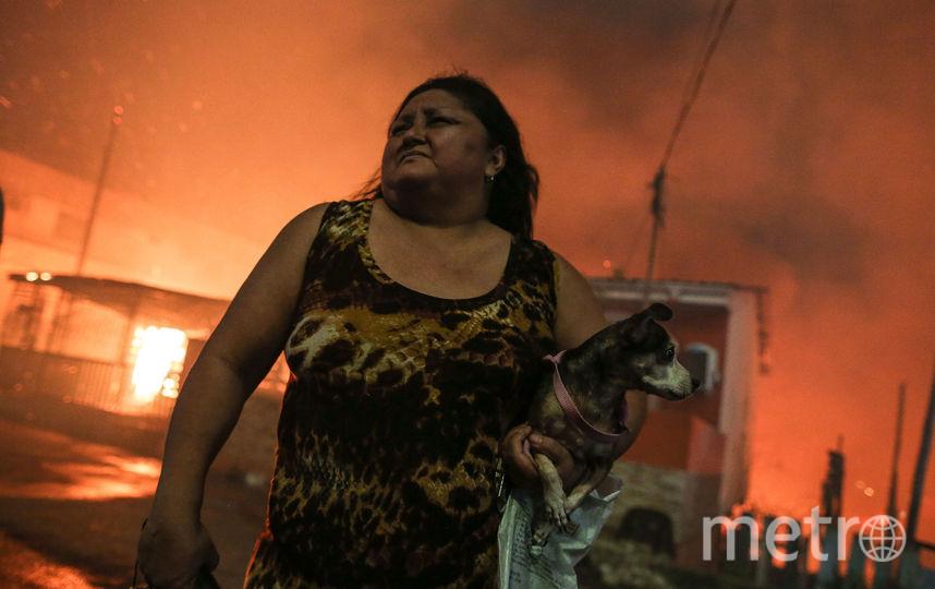 Около 600 домов уничтожено в результате пожара. Фото AFP