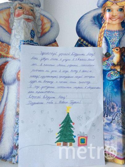 """Моя доченька Вишнёва Мария, которой исполнилось недавно 9 лет очень хочет получить приз от Деда Мороза. Моя Маша очень добрая и романтичная. Она верит в Деда Мороза и чудеса, которые случаются под Новый год. Фото Вишнёва Виталия Александровна, """"Metro"""""""
