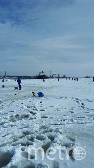 Рыбаки-любители на ловле корюшки. Фото nw_fish_bro, vk.com