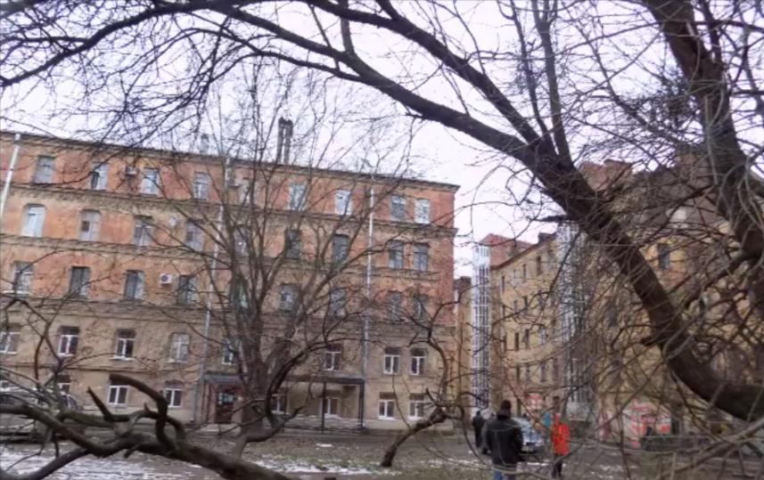 Независимое обследование домов на Тележной улице. Фото Скриншот Youtube