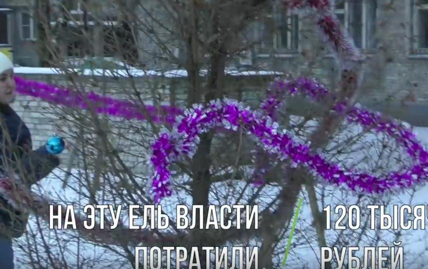 """В Петербурге """"скелет"""" ёлки украсили сотнями тысяч рублей. Фото Все - скриншот YouTube"""