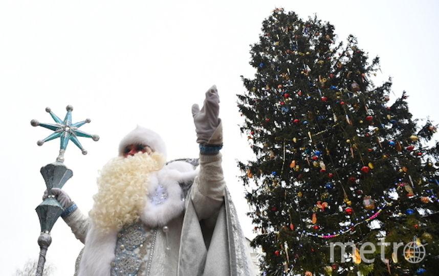 Ёлка на Соборной площади Московского Кремля. Фото РИА Новости