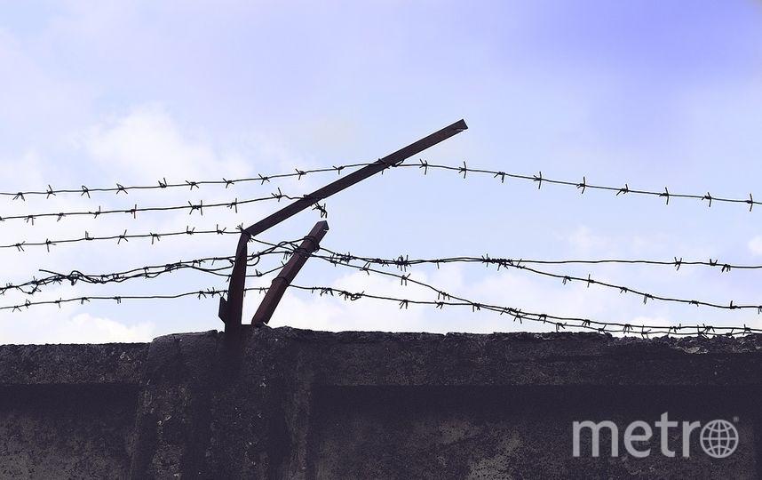 Петербуржцу грозит 3 года тюрьмы за пост в Сети. Фото pixabay.com