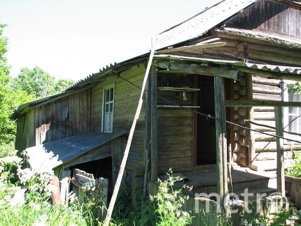 Жизнь в глухой деревне. Фото из личного архива семьи Винтер
