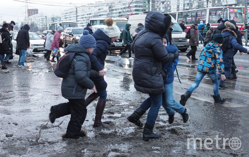 """В Петербурге в этом декабре оттепель сменяется морозами очень быстро. Фото Святослав Акимов, """"Metro"""""""