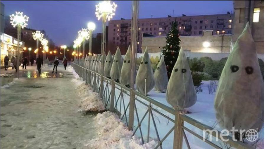 """Петербуржцы забавляются, комментируя елочки в мешках. Фото https://www.instagram.com/elihahlight/, """"Metro"""""""