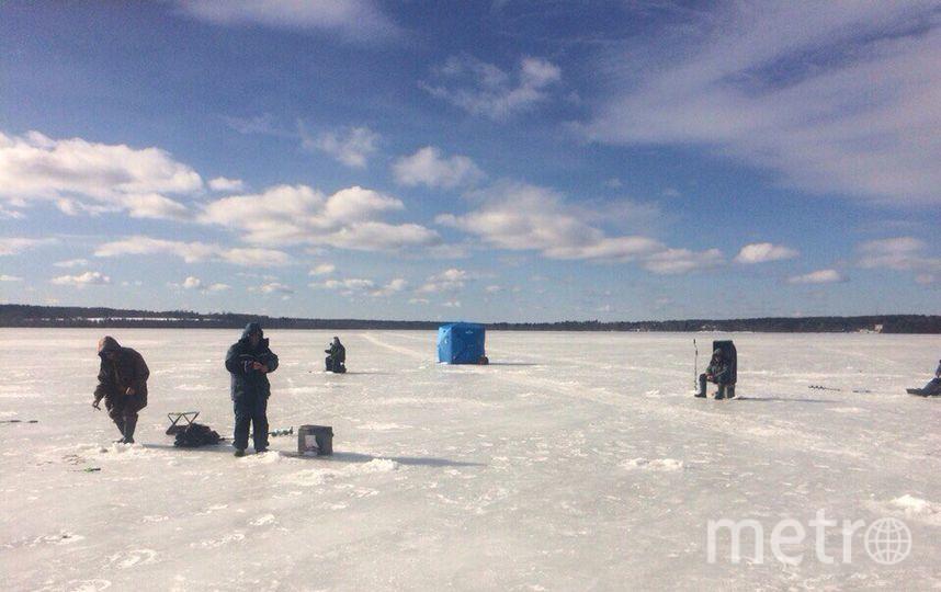 Руководство дамбы пообщалось с петербургскими рыбаками. Фото nw_fish_bro