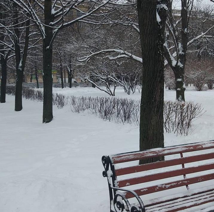 Снежная сказка: Петербуржцы делятся зимними фото в Instagram. Фото Скриншот Instagram: @tatiana_burchevskaya