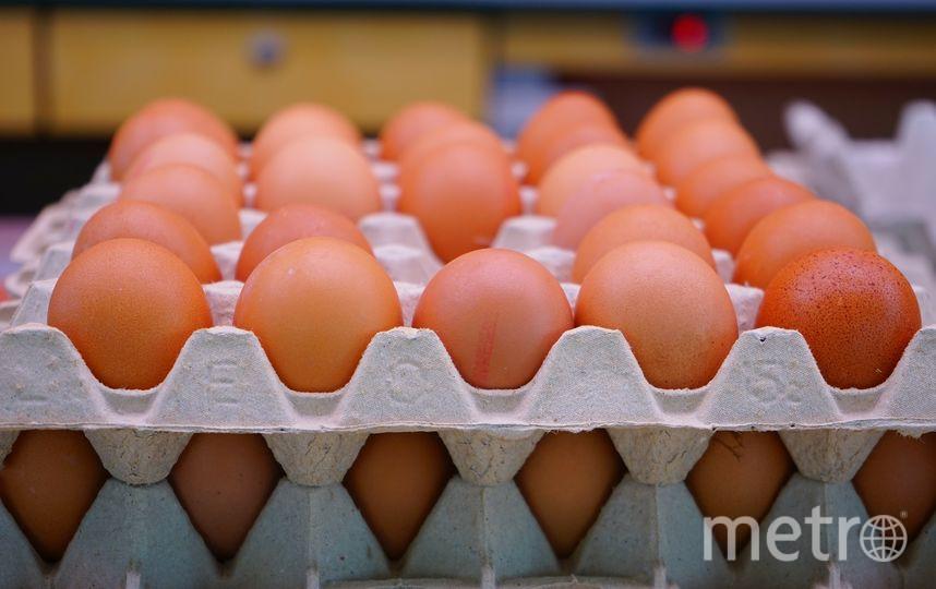 Куриные яйца. Фото https://pixabay.com/