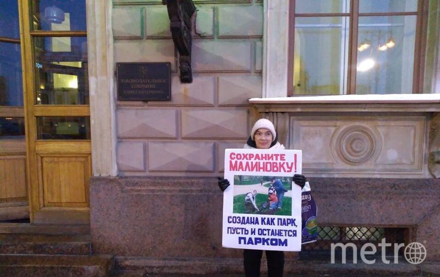 Защитники парка Малиновка провели одиночный пикет перед ЗакСом. Фото предоставлено активистами