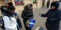 Депутаты Петербурга продолжат борьбу против нелегальной торговли